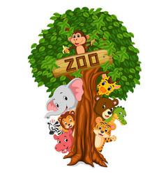 funny animal hiding behind a tree vector image