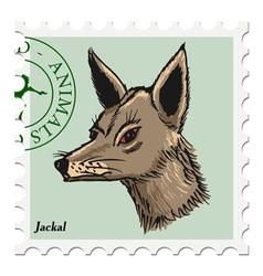 jackal vector image vector image