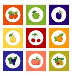 Round fruit and berry icons on colorful background vector