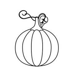 Silhouette pumpkin vegetable halloween icon vector