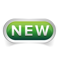 New web button vector