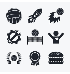 Volleyball and net icons winner laurel wreath vector