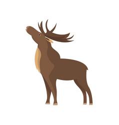 Bull elk isolated icon vector