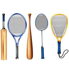 Rackets and bat vector image vector image