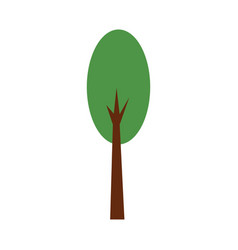 Tree forest natural camping foliage plant vector