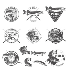Pike fishing labels vector image