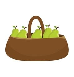 fresh pear farm product vector image