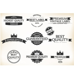 Satisfaction Guarantee Label and Vintage Premium vector image