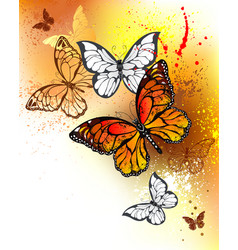summer butterflies monarchs vector image
