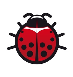 Red and black spotted ladybug icon vector image