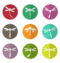 group of dragonfly in the circle vector image vector image