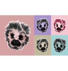 Pansies flower set vector image