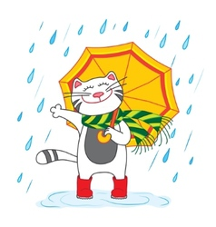 Cat with umbrella under the rain vector