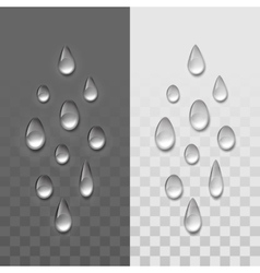 Realistic water drops set isolated vector