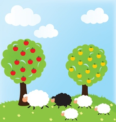 Sheep and nature vector