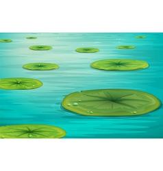 Calm pond scene vector