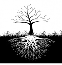 tree roots silhouette vector image