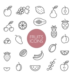 Fruits and berries lines icons vector