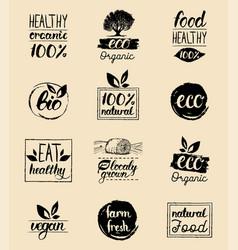 Ecoorganicbio logo cards templates vector