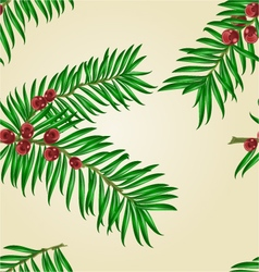 Seamless texture yew branches with red berries nat vector