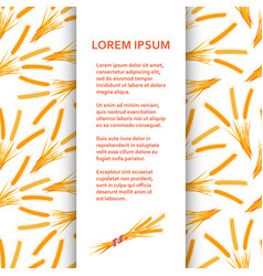 flat poster or banner template with wheat vector image vector image