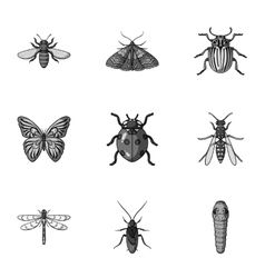 Insects set icons in monochrome style big vector