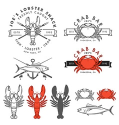 Set of retro seafood design elements vector image