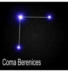 Coma Berenices Constellation with Beautiful Bright vector image vector image