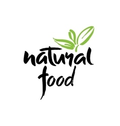 food design Brush lettering vector image