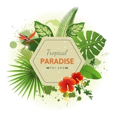 tropical background7 vector image