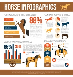 Horse breeds infographic presentation flat poster vector