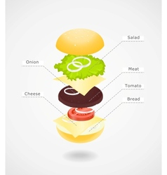 Composition of hamburger vector