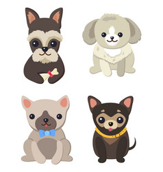 dogs variety collection poster vector image vector image