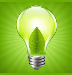 eco bulb vector image vector image