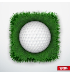 Icon symbol golf ball in green grass vector