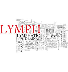 lymph word cloud concept vector image