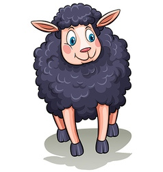 One black sheep vector
