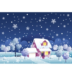 Winter night house vector image