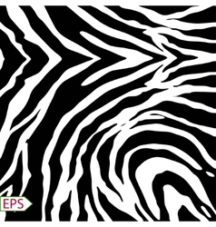 Zebra background with black stripes vector