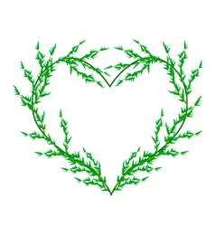 Fresh green leafy leaves in a heart shape vector