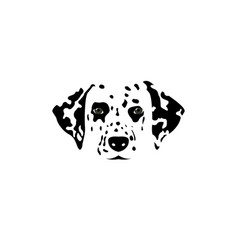 isolated dalmatian dog black and white head vector image