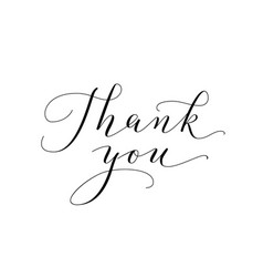 thank you words hand written custom calligraphy vector image