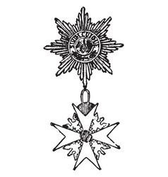 The black eagle is a military decoration of vector