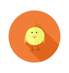 Yellow Chicken Flat Icon over Orange vector image