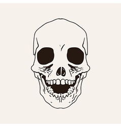 Sketch bones of the head vector