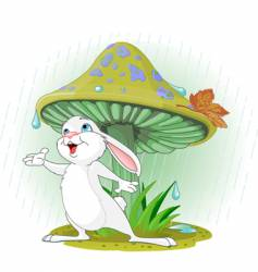 mushroom rabbit vector image