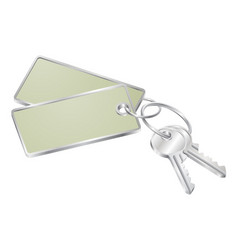 two keys with blank tag for text vector image