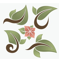 spring leaves vector image