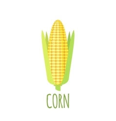 Corn icon in flat style on white background vector