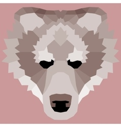 Brown low poly bear vector image vector image